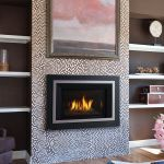Efficient Fireplace Best Of 24 Best Gas Inserts Images On Pinterest Gas Fireplace Inserts