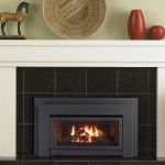 Regency Fireplace Prices Inspirierend 24 Best Gas Inserts Images On Pinterest Gas Fireplace Inserts